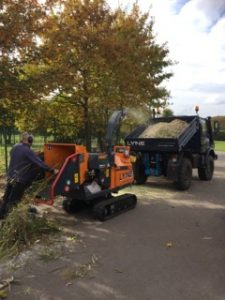 D Lyne Grounds Maintenance